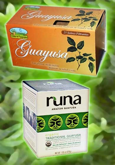 ILEX GUAYUSA produkty