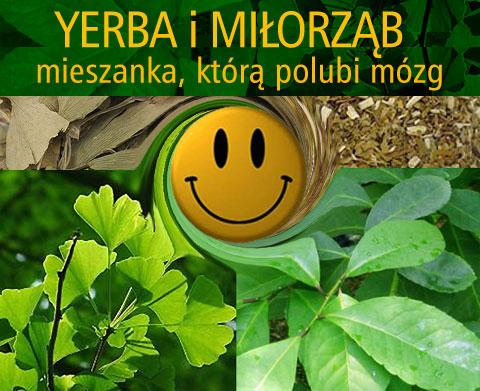 MILORZAB I YERBA MATE