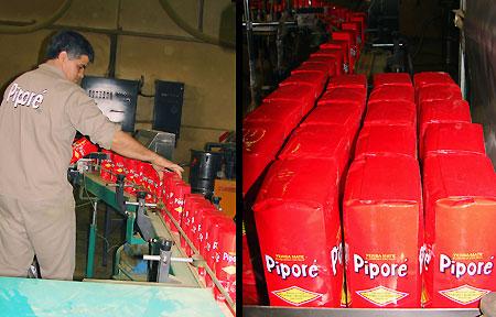 Yerba mate Pipore fabryka